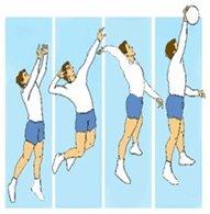 Los Fundamentos T 233 Cnicos Del Voleibol Webscolar